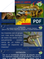 Sanidad Agrícola 2017