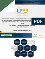 Presentacion Trabajo de Grado Maestria UNAD Definitivo Sep 19