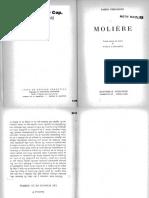 05066195 FERNÁNDEZ - Las audacias de la comedia (Cap V en Moliere).pdf