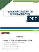 Indicadores Brecha Del Sector Ambiental