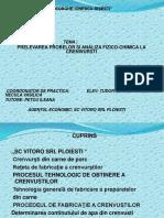 Proiect crenvusti.pptx