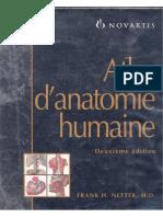 Anatomie Netter Full 1
