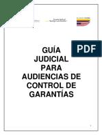 Guia Para Audiencias de Juez de Control