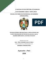 291612177-Proyecto-de-Trucha-Ahumada.doc