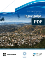 TegucigalpaEstudiodeCasoESP.pdf