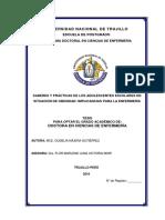 TESIS DOCTORAL GUDELIA NÁJERA GUTIÉRREZ.pdf