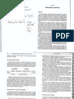 06 Psicologia cognitiva piaget bruner gadner de  palladino.pdf