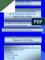 anatomadelojoenanimalesdomsticos-110224234217-phpapp02