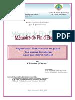 Diagnostic de l'AEP de la province Chichaoua