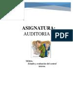 Estudio y Evaluación Del Control Interno.
