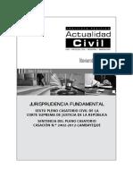 Jurisprudencia Fundamental