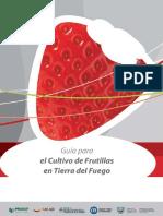 Guía para el cultivo de frutillas en Tierra del Fuego