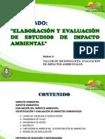 Evauacion y Estudio Impacto Ambiental
