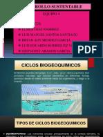 Desarrollo 2 Ciclos Expo