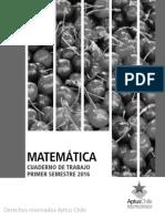 CT 1 basico I Semestre MATEMÁTICA.pdf