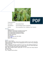 klasifikasi tanaman hasil laporan kba