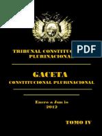autos TRIBUNAL CONSTITUCONAL.pdf