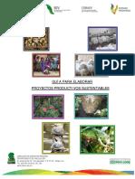 guia para proyectos productivos.pdf