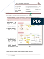 4_teste-bio12_2009-v1.pdf