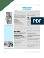 IR- 036 Sciatic Nerve