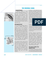 IR- 041 the Inguinal Canal