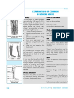 Ir-038 Examination of Common Peroneal Nerve