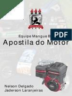 Manutenção e Regulagem do Motor.pdf