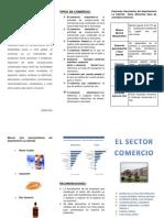 Triptico - El Sector Comercio en El Perú y La Libertad