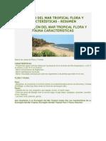 Ecorregión Del Mar Tropical Flora y Fauna Características