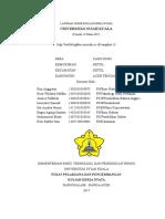 Laporan Akhir Kkn Atgh 119 Desa Cang Duri Kecamatan Ketol