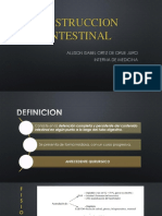 OBSTRUCCION INTESTINAL.pptx