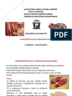Caracteristicas-del-tejido-muscular.pptx