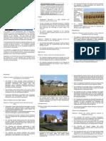 Bridgewater Township Comprehensive Plan