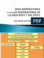 Fisiologia Respiratoria . Modificado Control Respiratoria en La Gestante