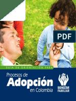 GuiaAdopcion-ESP.pdf