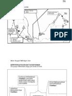 Kepentingan Kawasan Tanah Pamah (2)