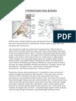 Sistem Pernafasan Pada Burung