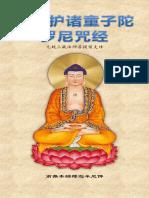 《佛说护诸童子陀罗尼咒经》 - 简体版 - 汉语拼音
