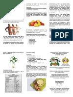 Triptico Beneficios Del Jengibre Al Metabolismo