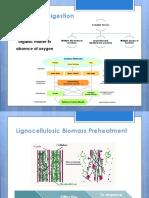 Biomass Pretreatment