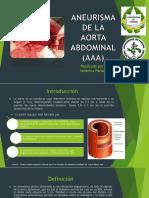 aneurismadelaaortaabdominal-170405132007