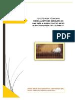 TESINA-FINAL-DE-EXPERIMENTAL-PDF (1).pdf