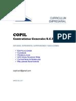 CV-Copil-doc 07.03.17