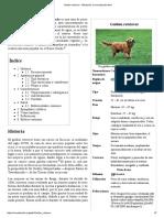 Golden Retriever - Wikipedia, La Enciclopedia Libre