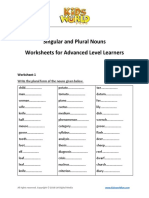 Singular and Plural Nouns Advanced Worksheets