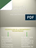 psicopatologia  psicomotilidad