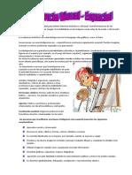 293_Inteligencia_Visual-Espacial.pdf