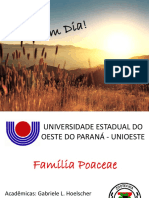FAMÍLIA POACEAE.pptx