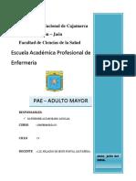 Proceso de Enfermeria - Adulto Mayor