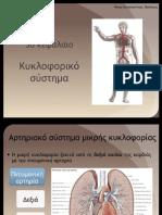 Ανατομία - Φυσιολογία ΕΠΑΛ 3ο κεφάλαιο